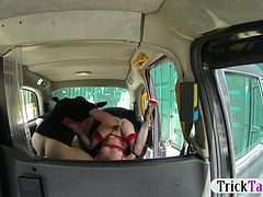 Lucky driver got his dick shared by two extremely horny gals